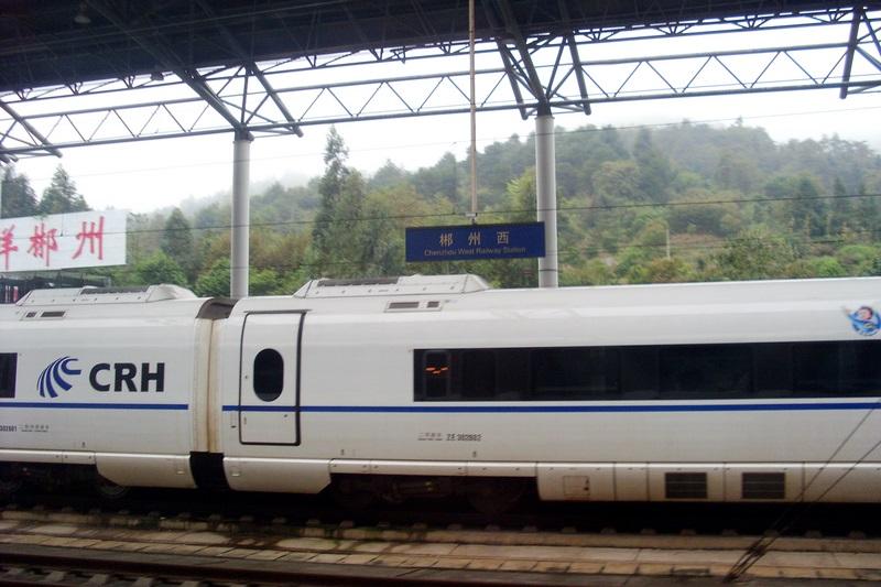 SL384610.jpg