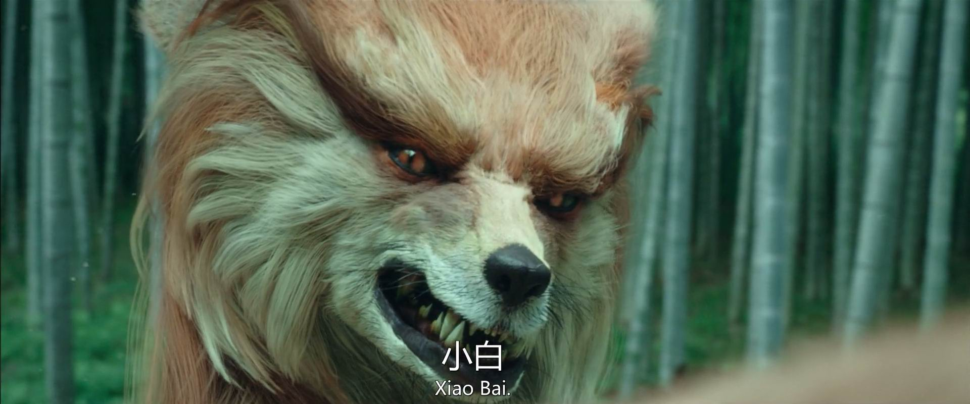 2020陈立农李现喜剧《赤狐书生》HD4K/1080P.国语中字