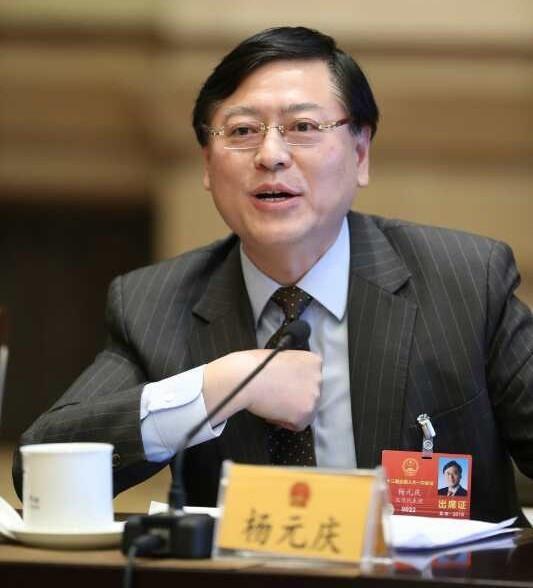 """杨元庆,两个协会的代表:""""新信息技术""""赋予新经济力量,并走向全球价值链的高端"""